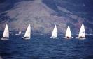 Competição de barco à vela