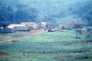 Vista da Reserva Rio das Cobras Laranjal do Sul Paraná 1976 APG00824